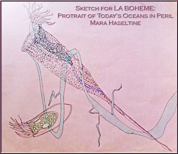 Sketch for La Boheme by Mara Haseltine